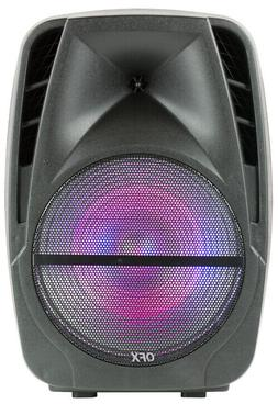 """QFX 12"""" Portable Rechargeable Bluetooth Party Speaker with M"""