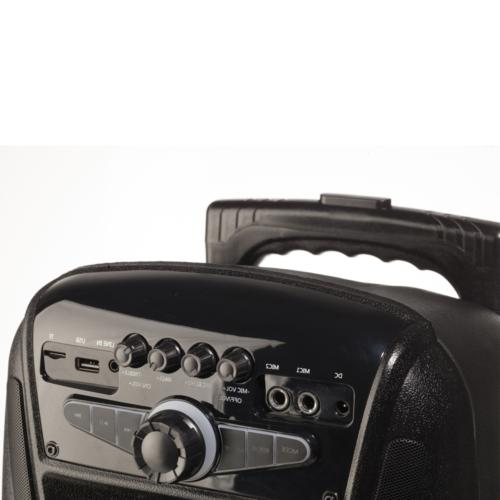 NGS 35W Portable Bluetooth Speaker with in FM Radio