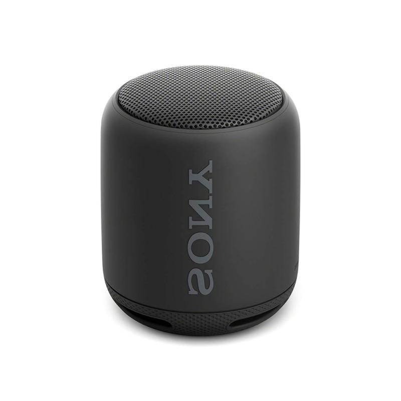 Sony XB10 Portable Wireless Speaker with Black